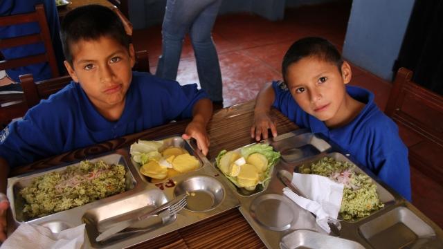 Becas de comedor para niños de Madrid