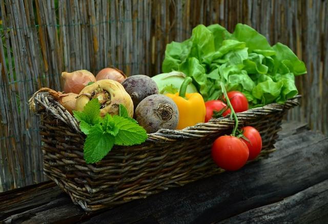 productos ecológicos en tu empresa
